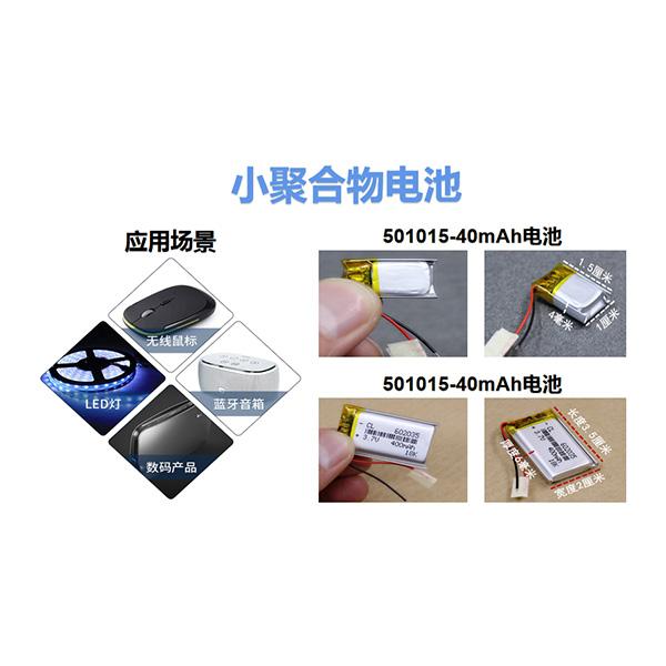 小聚合物电池.jpg
